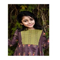 Brown With Green 2PCs Printed Cambric