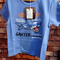 Shark Blue t-Shirt